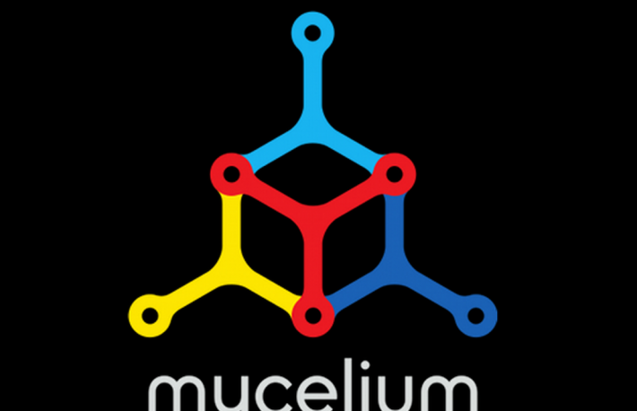 Mycelium promises Bitcoin card with a brain