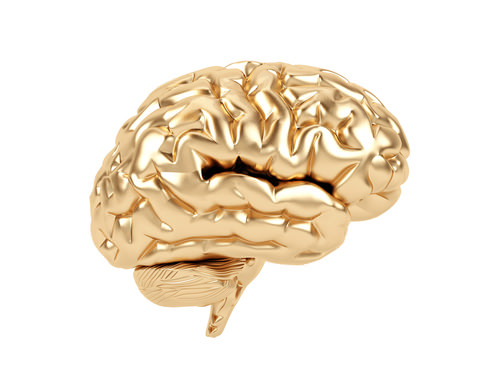 How to create a brain wallet - CoinDesk