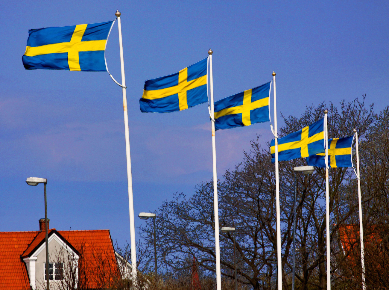 Sweden's Government Forced to Return $1.5M in Bitcoin to Drug Dealer: Report