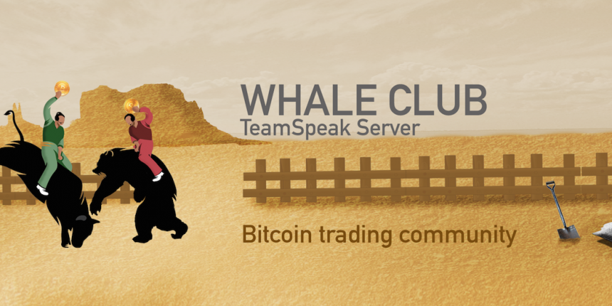 Inside Whale Club: The Trading Room that Loves Bitcoin Price