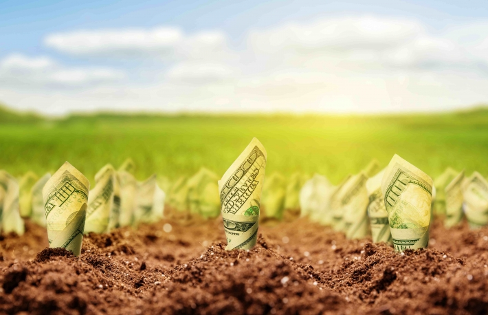 http://www.shutterstock.com/pic-212751259/stock-photo-american-dollars-grow-from-the-ground.html?src=UapG4WSHlTEDL5Md4wjzfA-1-60