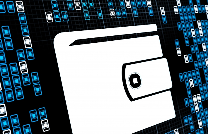 US Homeland Security Challenges Freelancers to Design It a Digital Wallet