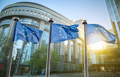 http://www.shutterstock.com/pic-253692781/stock-photo-european-union-flag-against-parliament-in-brussels-belgium.html?src=ZvujkaoEdelRgYpAYqtVdw-1-7