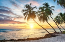 http://www.shutterstock.com/pic-173151446/stock-photo-beautiful-sunset-over-the-sea-with-a-view-at-palms-on-the-white-beach-on-a-caribbean-island-of.html?src=YyYBRRqhOmL_aXDQi4CC5A-1-7