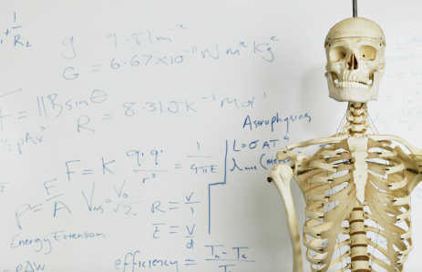 http://www.shutterstock.com/pic-143874361/stock-photo-skeleton-in-front-of-whiteboard-with-mathematics-calculation.html