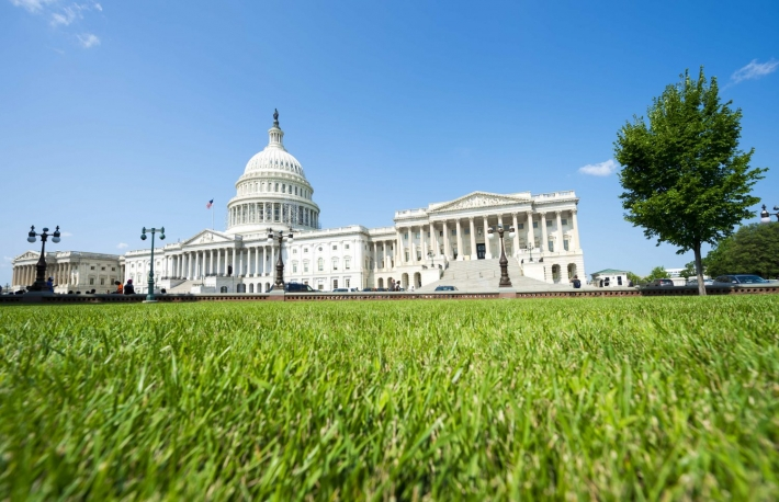 http://www.shutterstock.com/pic-291775949/stock-photo-capitol-building-washington-dc-usa-scenic-view-with-green-grass-summer-lawn.html