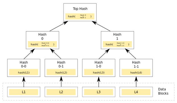"Building a Merkle Tree - the ""Top Hash"" is the Merkle Root"