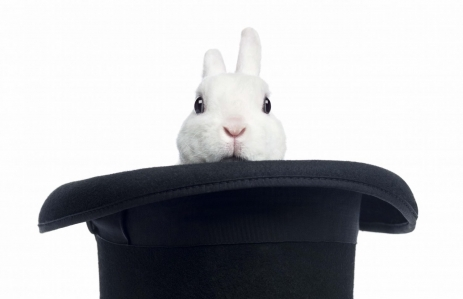 http://www.shutterstock.com/pic-157260752/stock-photo-mini-rex-rabbit-appearing-from-a-top-hat-isolated-on-white.html