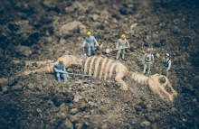 http://www.shutterstock.com/pic-275185391/stock-photo-miniature-people-with-dinosaur-fossil-in-vintage-color-tone.html?src=YxstMvUHUxDjGFCUClHbxQ-1-37