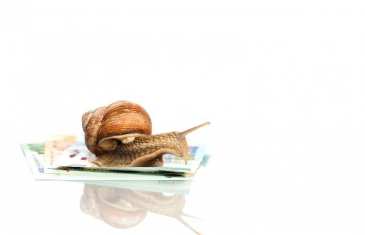 https://www.shutterstock.com/pic-434303548/stock-photo-roman-snail-on-euro-notes-on-the-white-background.html