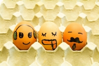 eggs, happy