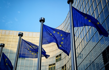 https://www.shutterstock.com/image-photo/eu-flags-front-european-commission-brussels-162128453
