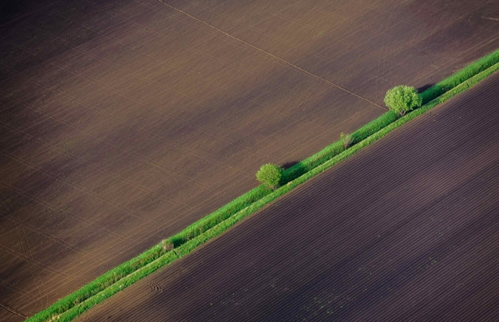 https://www.shutterstock.com/image-photo/bird-eye-view-fields-agricultural-parcel-308044379