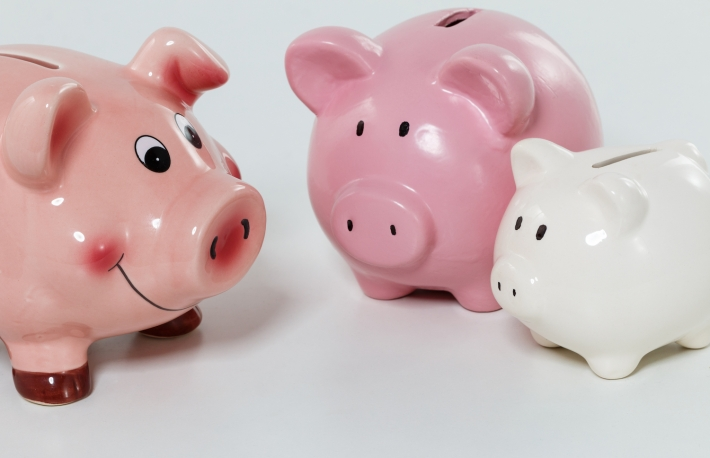 https://www.shutterstock.com/image-photo/three-piggybanks-on-table-closeup-budgeting-287171876?src=-Fxe17_xhiuxUGN2DXx1BA-1-48