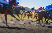 https://www.shutterstock.com/image-photo/horse-race-colorful-bright-sunlit-slow-563694403