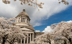 Cryptocurrency exchanges in washington state