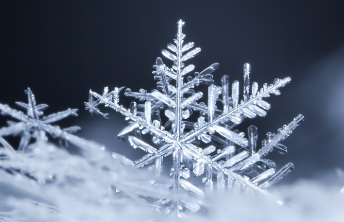 https://www.shutterstock.com/image-photo/natural-snowflakes-on-snow-photo-real-495537433