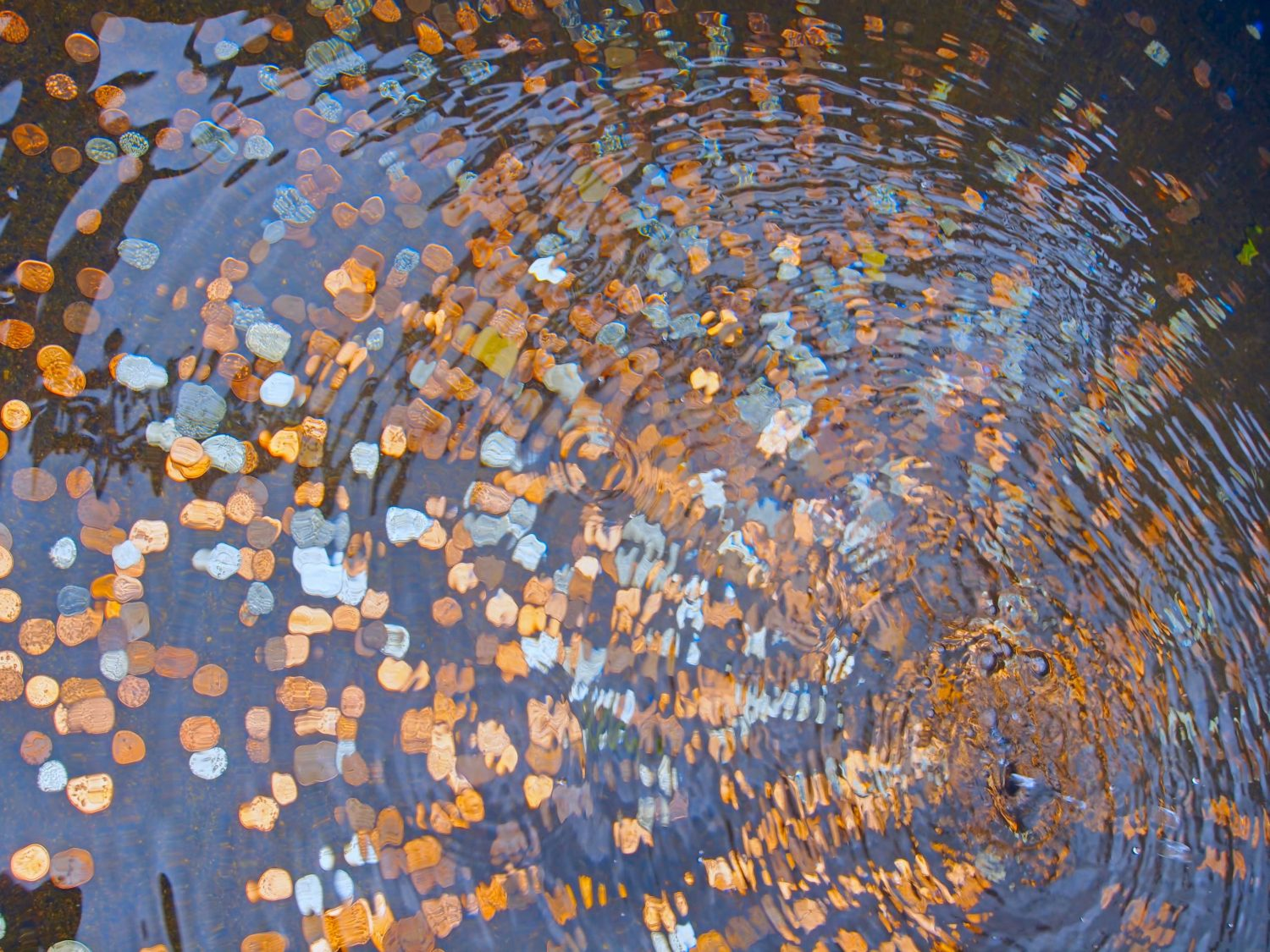 coins, water