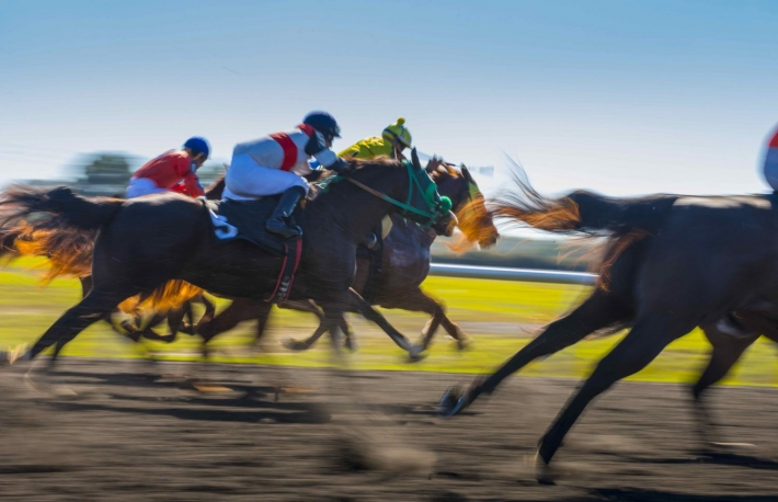 https://www.shutterstock.com/image-photo/horse-race-colorful-bright-sunlit-slow-563694370?src=CRkzEvfqlzAqe6eLMXx4vg-1-64