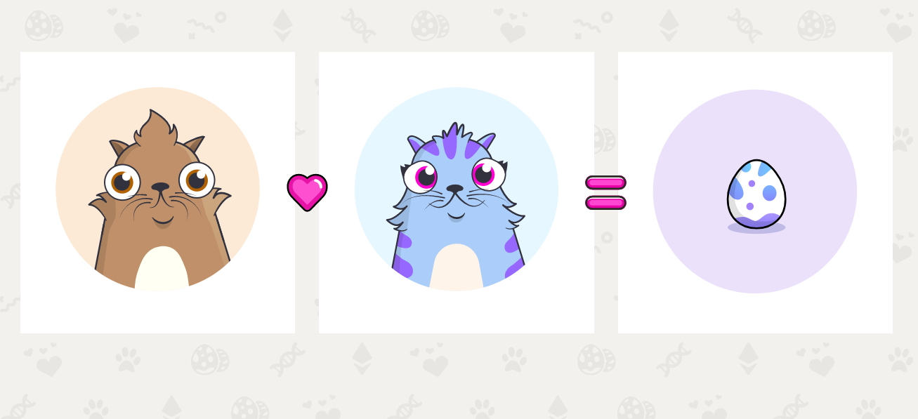 Nba Top Shot Cryptokitties Firm Dapper Labs Raising 250m At 2b Valuation Report Coindesk