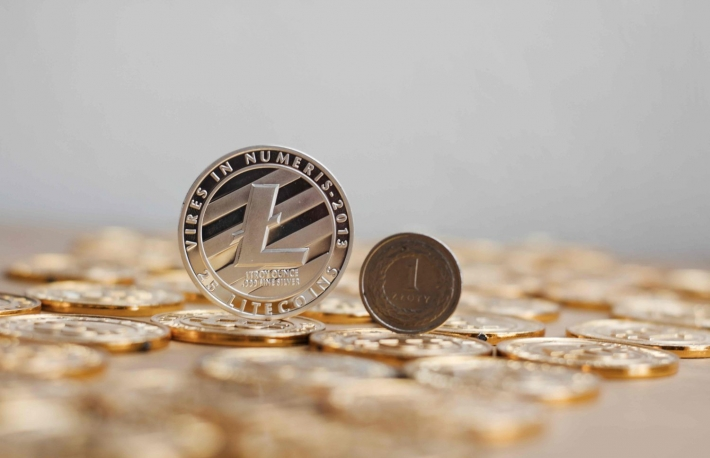 https://www.shutterstock.com/image-photo/crypto-currency-physical-metal-litecoin-coin-761058103?src=IhIYq6YGekFShG-ZwRbKaQ-1-57