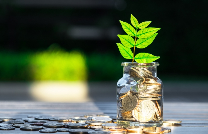 https://www.shutterstock.com/image-photo/plant-growing-savings-coins-investment-interest-515840386?src=zwaIoSIZ7nombed2M1VYnw-1-1