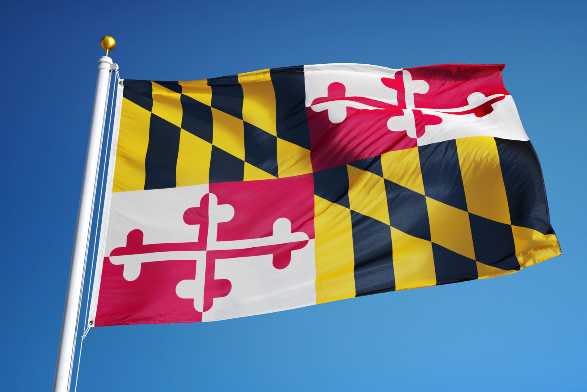 Maryland Targets Trading Platform Fraud as It Joins 'Cryptosweep' Effort