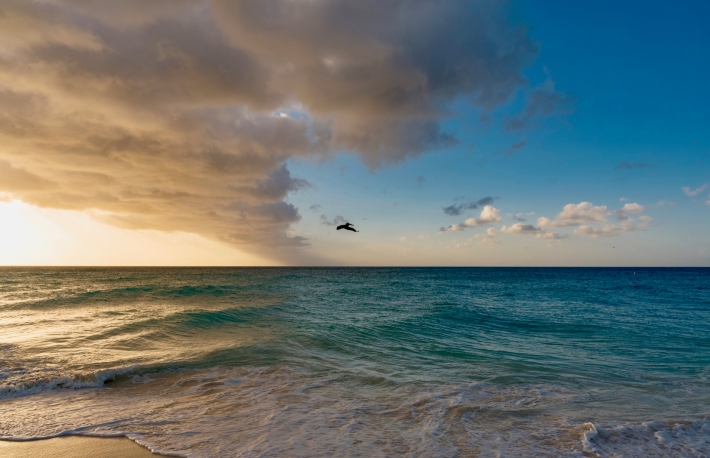 https://www.shutterstock.com/image-photo/panorama-on-waves-sea-sunset-caribbean-1044775540?src=OYgsBFjhj7pElX4s9xyeSQ-1-31