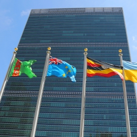 Crypto Startup Blockchain Partners With UN Officials on Sustainability Goals