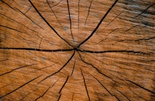 https://www.shutterstock.com/image-photo/round-cherry-wood-grain-deep-cracks-1101015035?src=wgfKCnmY3NEAsWJT0aRcLw-1-68