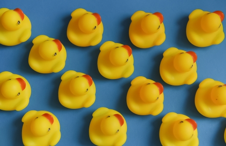 https://www.shutterstock.com/image-photo/group-yellow-rubber-ducks-toys-lines-1073702060?src=RwF5hqe_JHQk7te5vakCoA-2-16