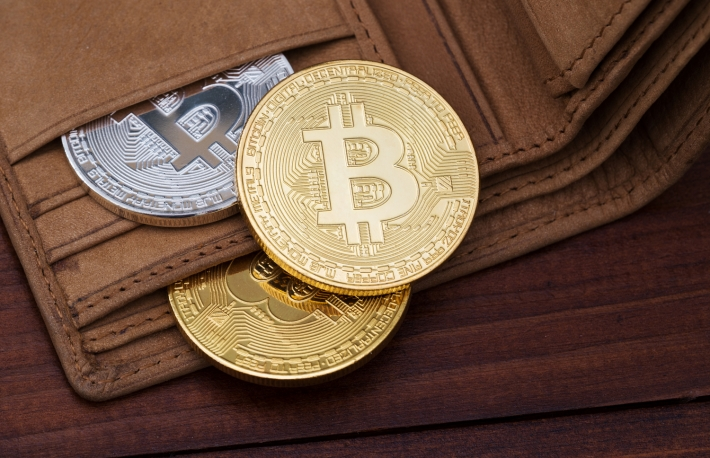https://www.shutterstock.com/image-photo/metal-bitcoins-brown-leather-wallet-bitcoin-723362470?src=aDseaXMyxj98BP7zDOczSA-1-88