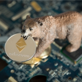 https://www.shutterstock.com/image-photo/bear-ethereum-cryptocurrency-mouth-on-computer-1063157933?src=i_CS5QcNuzYi5ctNfOmsFA-1-10