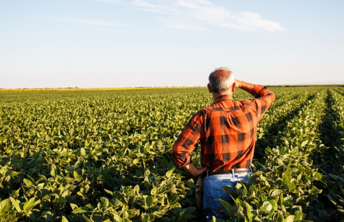 https://www.shutterstock.com/image-photo/senior-farmer-field-looking-into-distance-401435578?src=XtVxKTlidjNWQ0LEyLrkTQ-1-25