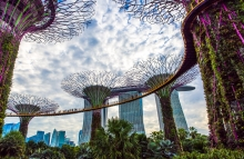 https://www.shutterstock.com/image-photo/singapore01082018-colorful-panoramic-view-garden-by-1165356139
