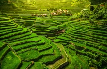 https://www.shutterstock.com/image-photo/world-heritage-ifugao-rice-terraces-batad-634025597