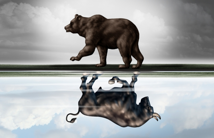 https://www.shutterstock.com/image-illustration/positive-financial-outlook-business-concept-bear-414234568?src=wONkeEmhlS0UGZR0o2Rs0A-1-12