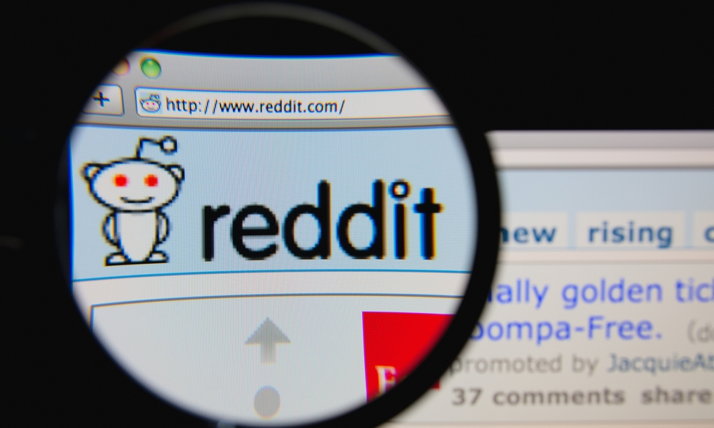 does cryptocurrency have a future reddit