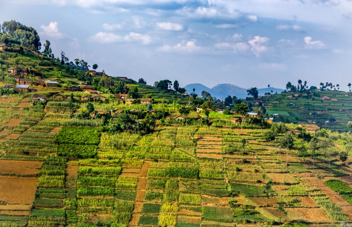 https://www.shutterstock.com/image-photo/beautiful-rural-landscape-agricultures-terraces-rwanda-1065352808?src=xk5XknjJU5aAeQLZKNnWjg-1-3