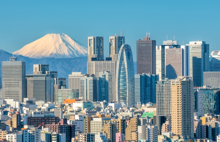 https://www.shutterstock.com/image-photo/tokyo-skyline-mountain-fuji-japan-552100717