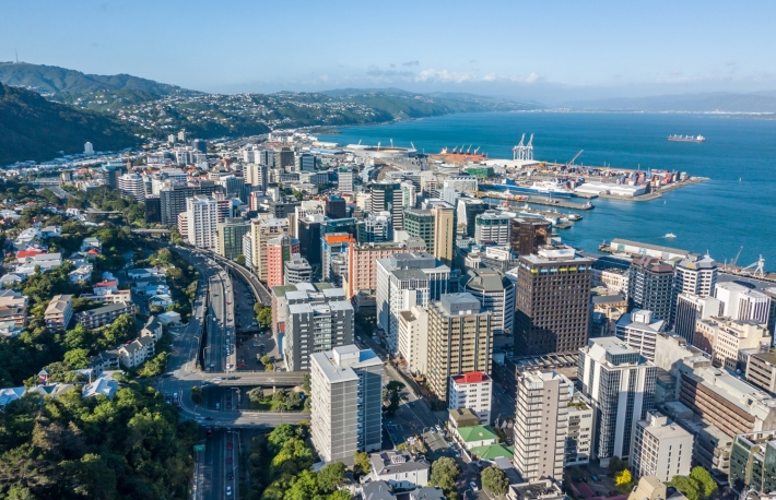https://www.shutterstock.com/image-photo/wellington-city-central-business-district-aerial-752032240