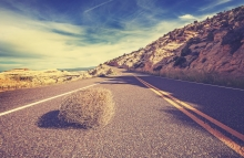 https://www.shutterstock.com/image-photo/vintage-toned-tumbleweed-on-empty-road-338377823