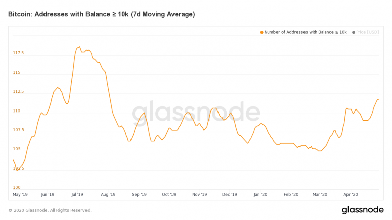 glassnode-studio_bitcoin-addresses-with-balance-%e2%89%a5-10-k-7-d-moving-average-1