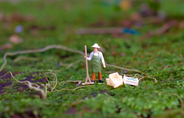 https://www.shutterstock.com/image-photo/close-miniature-farmer-people-elegant-design-761403946