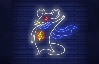 rat-poison-lightning-network