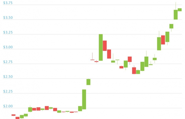OMG Price Doubles as DeFi and Record Ethereum Fees Create 'Perfect Storm'