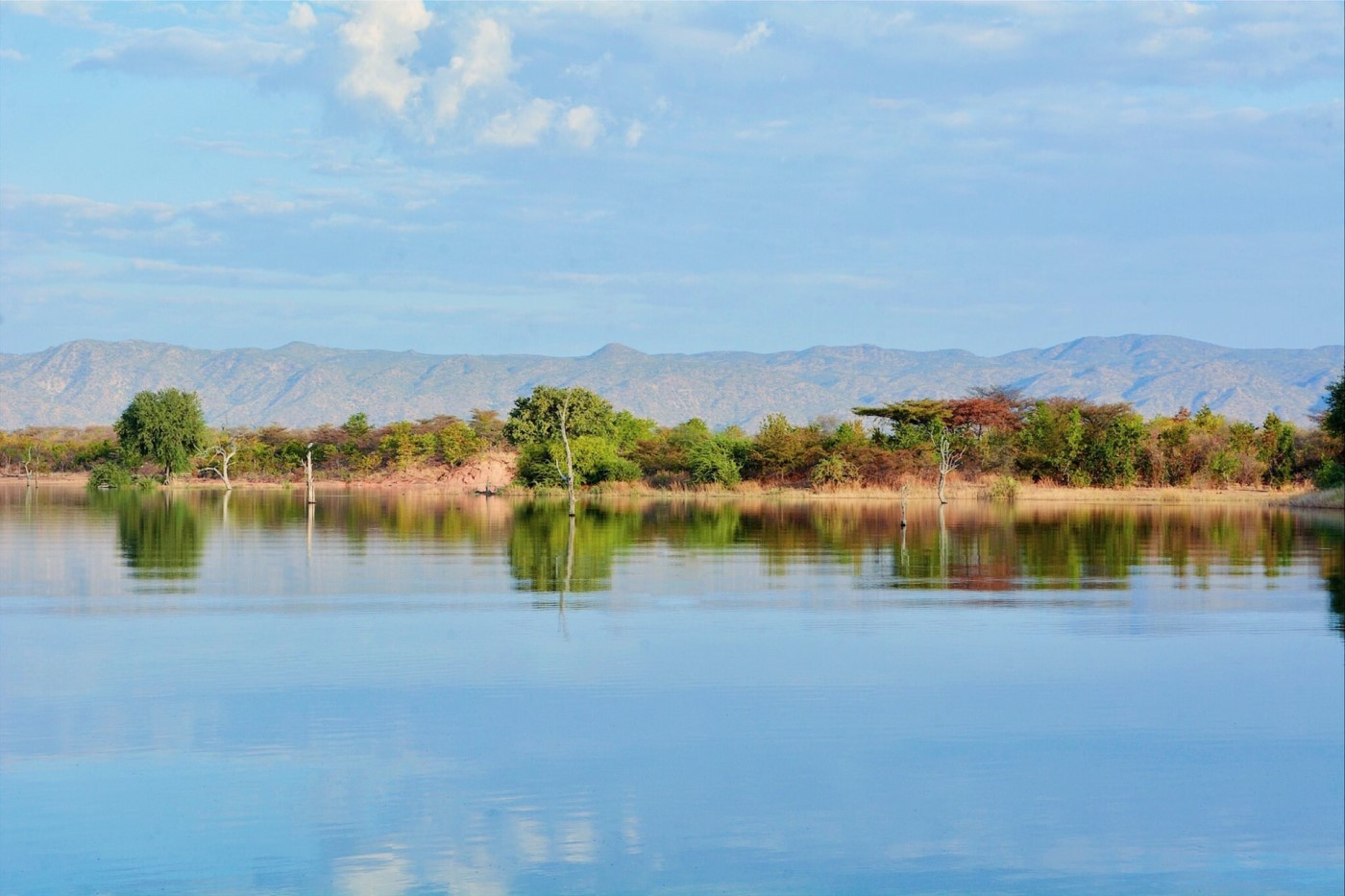 Zambia's Largest Land Titling Project Gets Blockchain Backing by Medici
